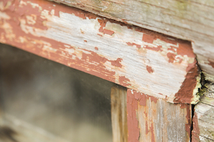 seal up frames to prevent pests this fall