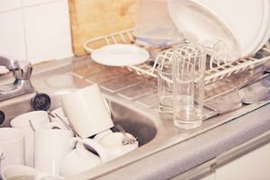 clean up your office kitchen to prevent pests this fall