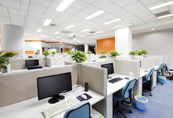 pest management for office space